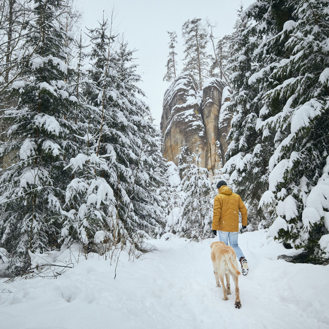 """""""Rear view of man with dog in winter nature"""" stock image"""