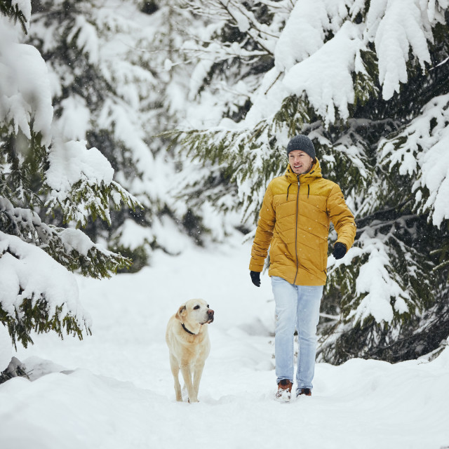 """""""Front view of man with dog in winter nature"""" stock image"""