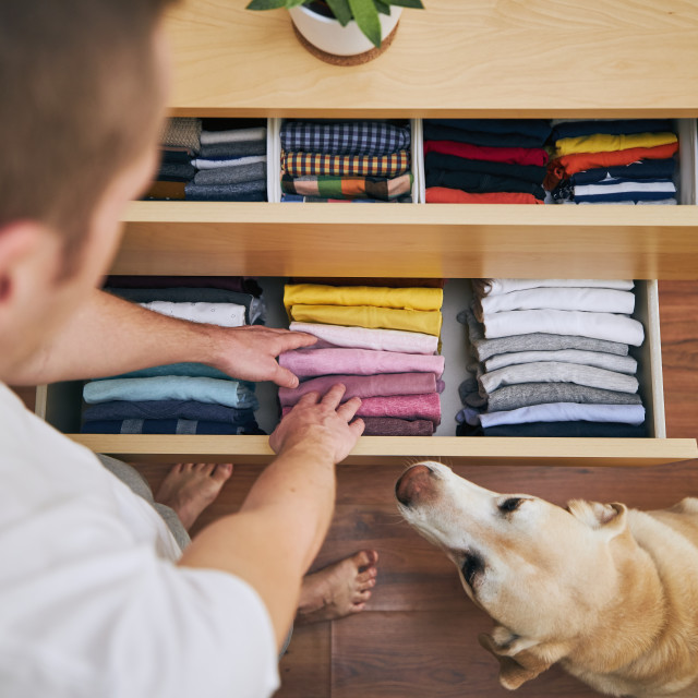 """""""Organizing and cleaning home"""" stock image"""