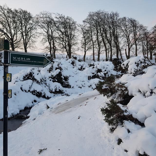 """""""Pentland Hills in Winter"""" stock image"""