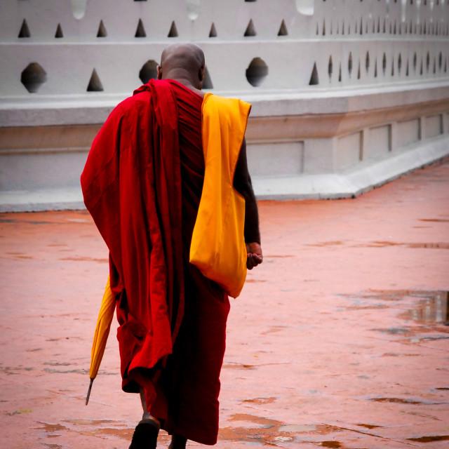 """Sri Lankan Buddhist Monk"" stock image"