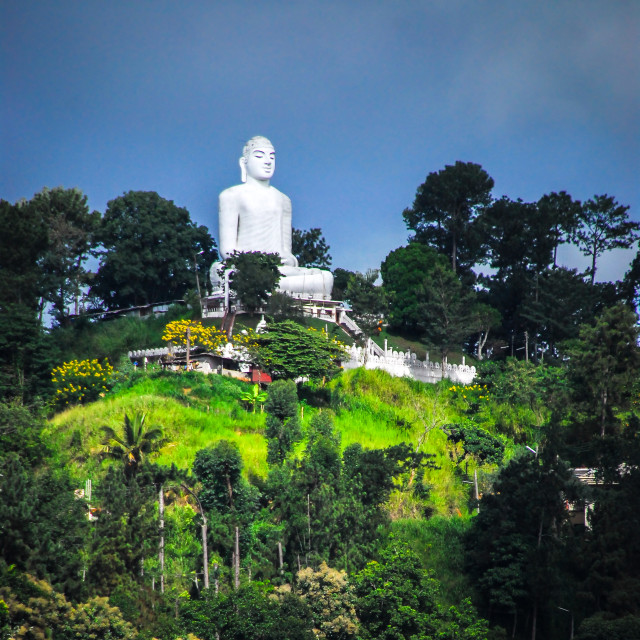 """""""Giant Buddha statue on the mountain in Kandy"""" stock image"""