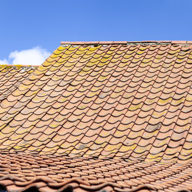 """""""tiled roof"""" stock image"""