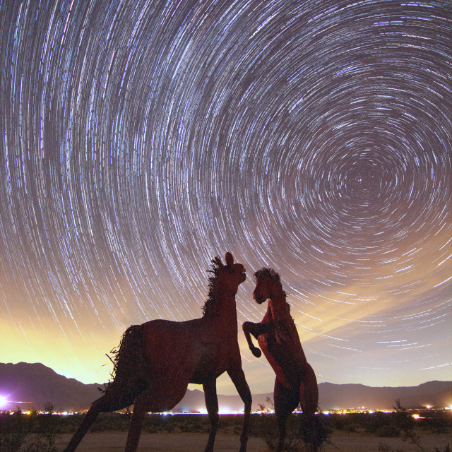 """""""Star Trails over horse sculptures"""" stock image"""