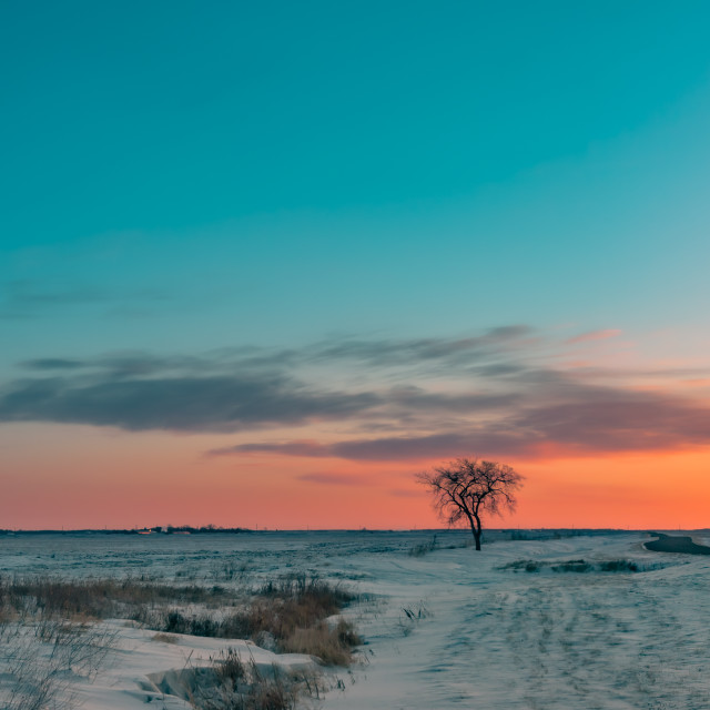 """Sunrise in the Prairies Panorama (panel 1 of 3, left)"" stock image"