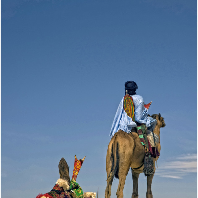 """Touareg men with camels; Sahara Desert"" stock image"