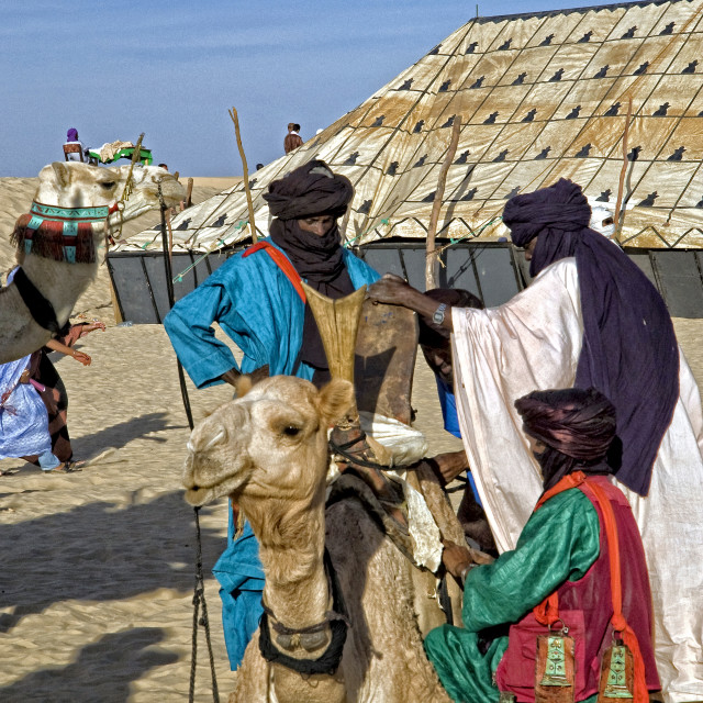 """Touareg men and camels; 'Festival au Désert'; Timbuktu, Mali"" stock image"