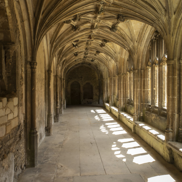 """""""Cloisters"""" stock image"""