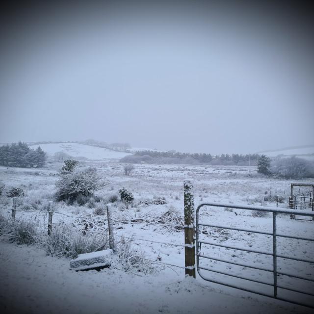 """Snow scene!"" stock image"
