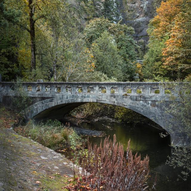 """Multnomah bridge view"" stock image"