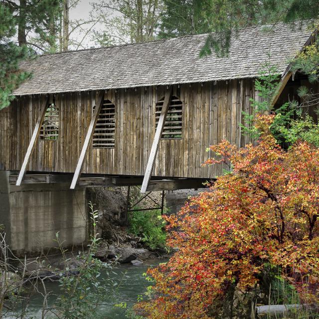 """Autumn covered bridge"" stock image"