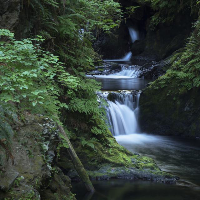 """Willaby Creek Falls"" stock image"