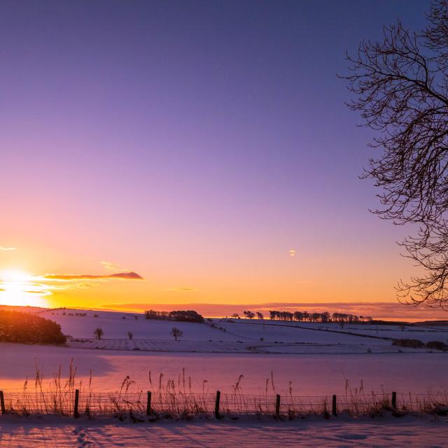 """Winter Sun on the Snow"" stock image"