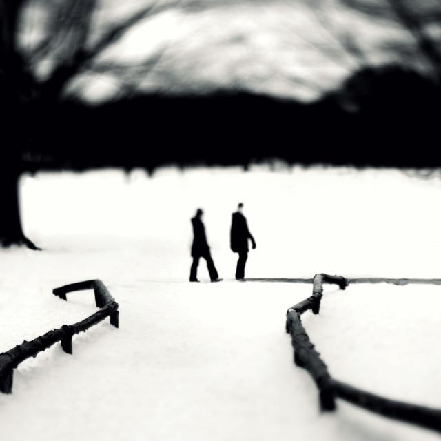 """Winter Stroll in New York City"" stock image"