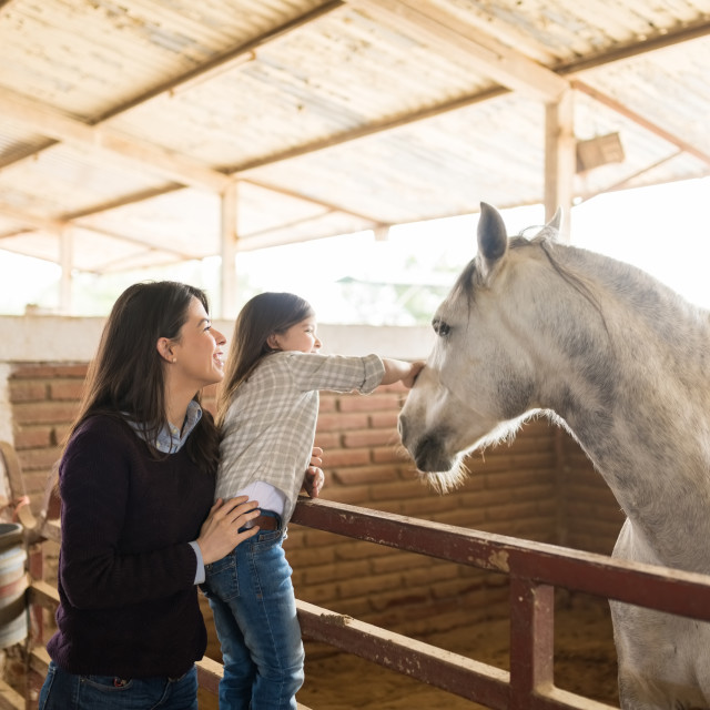 """""""Woman With Daughter Touching Horse In Barn"""" stock image"""