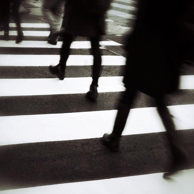 """New York City Crosswalk"" stock image"