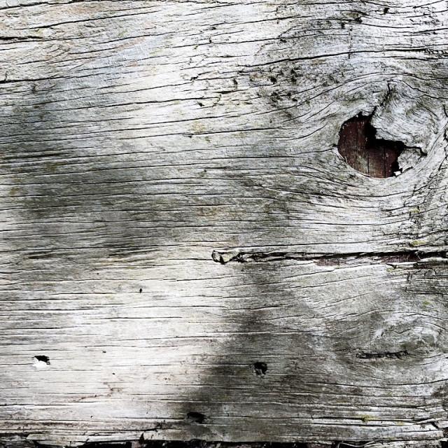 """""""Broken plank of wood"""" stock image"""