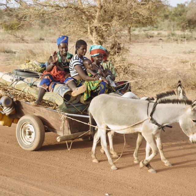 """Family with Donkey Cart in Burkina Faso"" stock image"