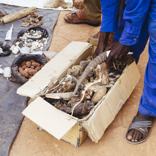 """Traditional Medicine on a market at Burkina Faso"" stock image"