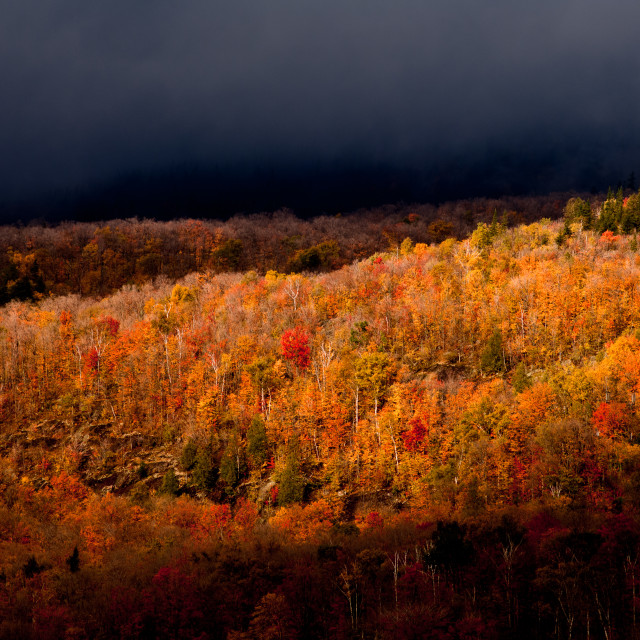 """""""Mountain Fall Foliage at Mont-Tremblant, Québec, Canada"""" stock image"""