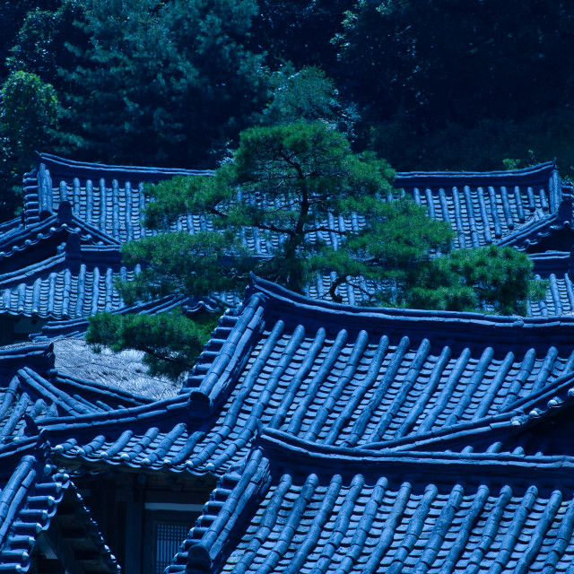 """""""Moonlit rooftop view of traditional South Korean houses"""" stock image"""