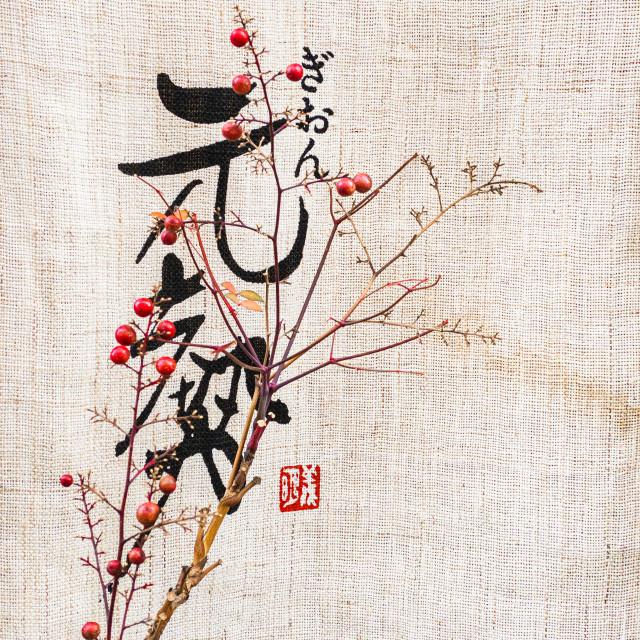 """A Noren curtain with Japanese script in Kanazawa, Japan."" stock image"