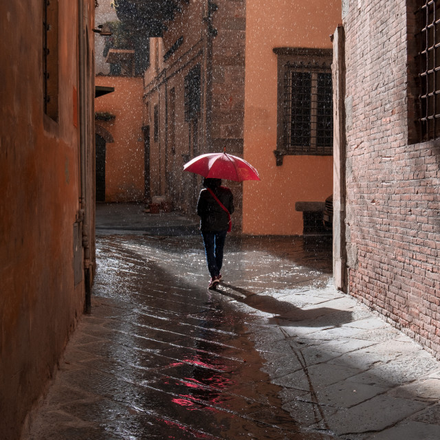 """""""Woman with umbrella in the rain, Lucca, Italy"""" stock image"""
