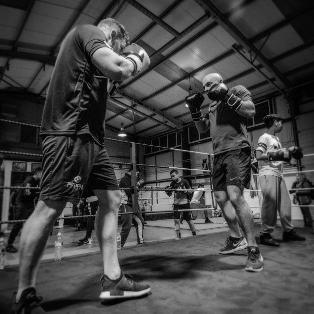 """""""Sparring"""" stock image"""