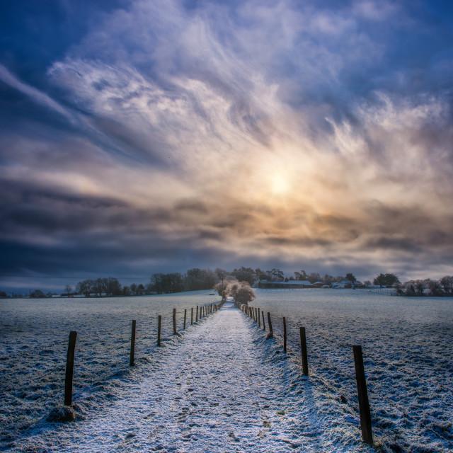 """""""Sunrise over Hampshire, UK"""" stock image"""
