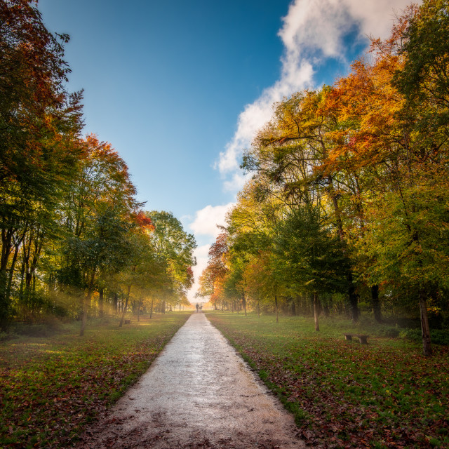 """Autumn afternoon in Lydiard Park, Swindon"" stock image"