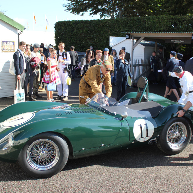 """""""Paddock Scene at the Goodwood Revival 2017"""" stock image"""