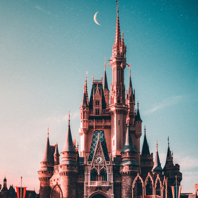 """Cinderella's Castle"" stock image"
