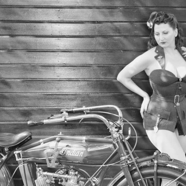 """1940's Pinup Model Kitten von Mew"" stock image"