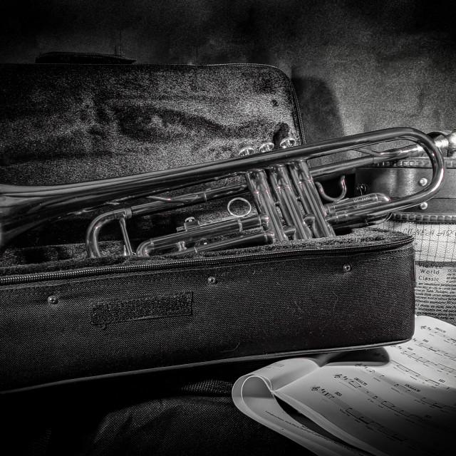 """Trumpet in case"" stock image"
