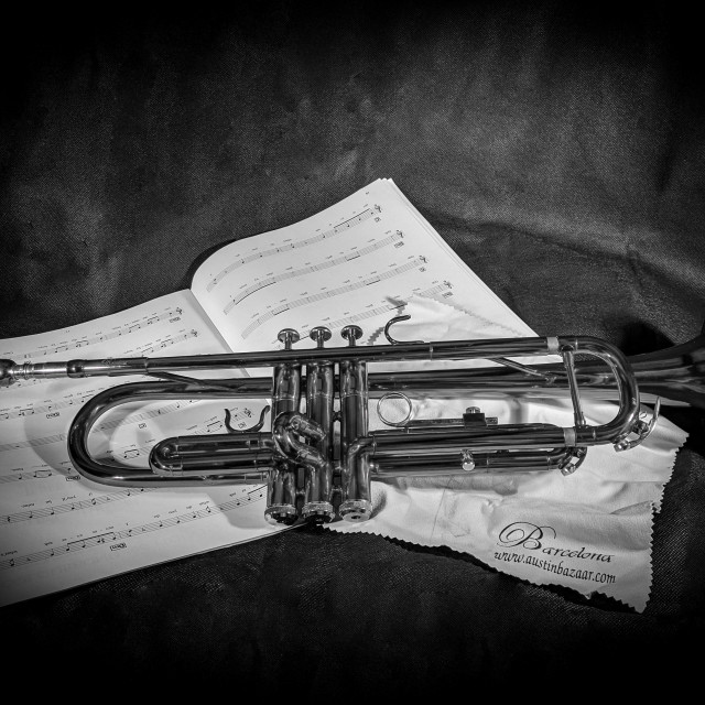 """Trumpet"" stock image"