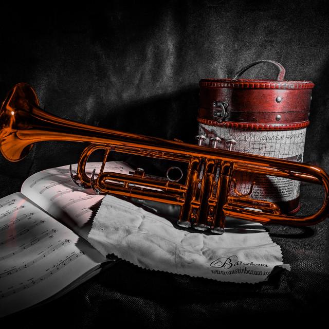 """""""Red trumpet still life"""" stock image"""
