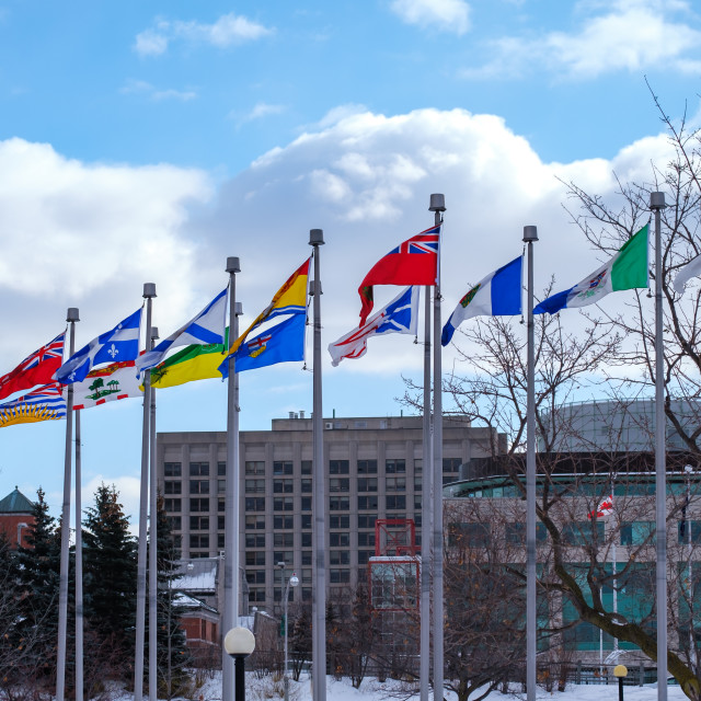 """""""Canadian provincial and territorial flags"""" stock image"""