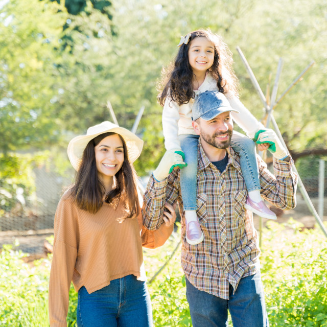 """""""Happy Parents With Daughter At Vegetable Garden"""" stock image"""