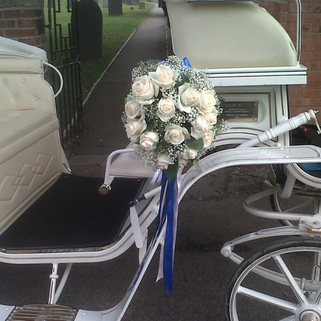 """""""White Roses and Blue Ribbons, Horse drawn Carriage, Summer 201"""" stock image"""