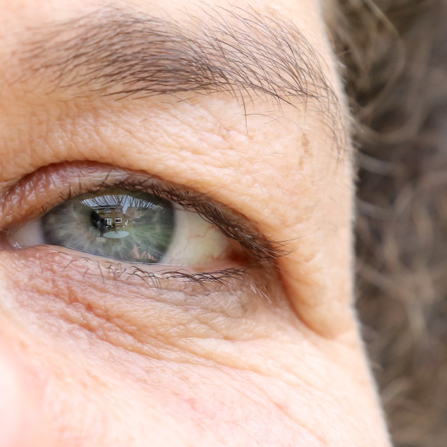 """""""I see you"""" stock image"""