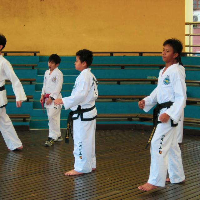 """Martial Arts"" stock image"