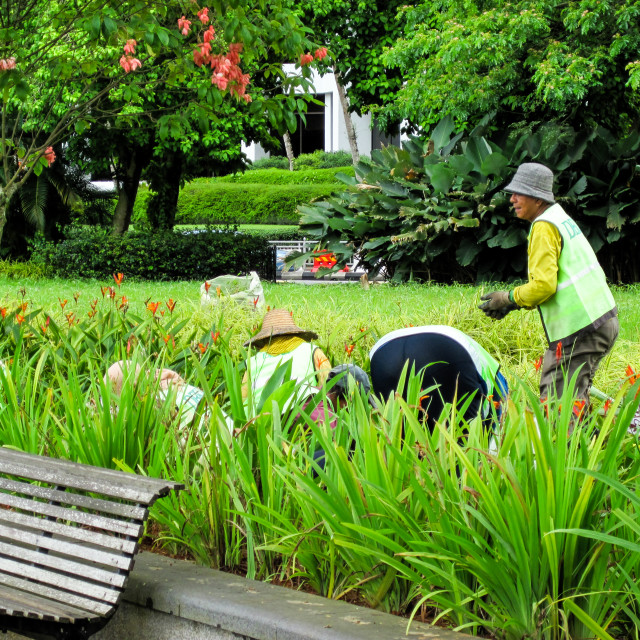 """Kuching Lawn Work"" stock image"