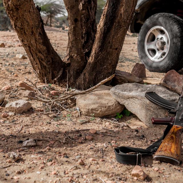 """AK-47, under the tree"" stock image"