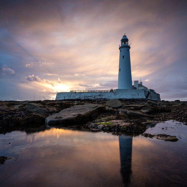 """St Mary's Lighthouse at Sunset."" stock image"