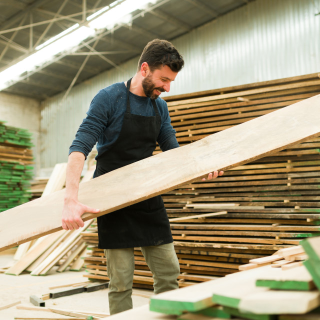 """""""Smiling man picking up a wood board in a workshop"""" stock image"""