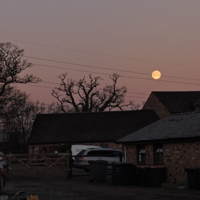 """""""Frosty Morning Moon, Suspended on The Electric Wires? Middleton, Staffordshire, February 2021"""" stock image"""