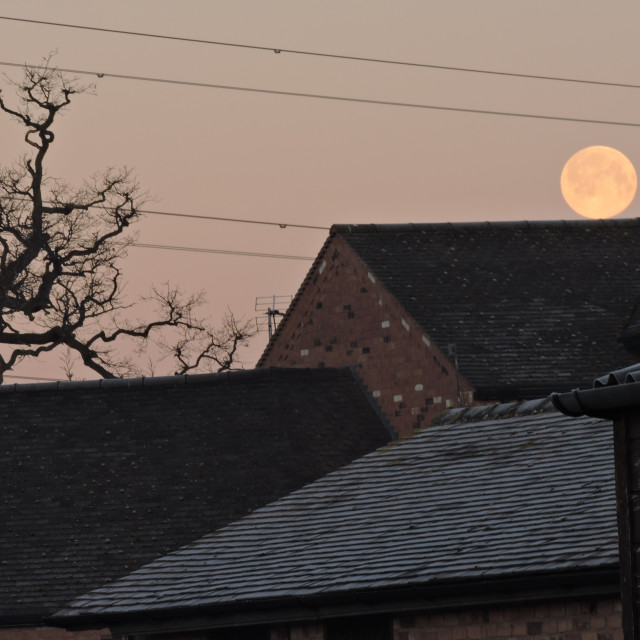 """""""Frosty Morning Moon, Balancing on the Roof, Middleton, Staffordshire, February 2021"""" stock image"""
