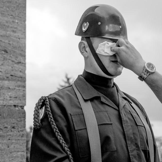 """Soldier at Anıtkabir"" stock image"
