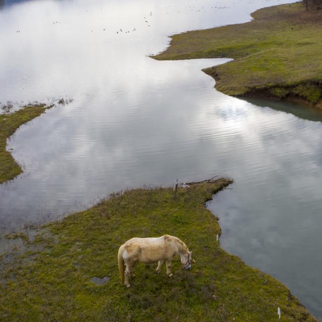 """Lake Plastiras"" stock image"