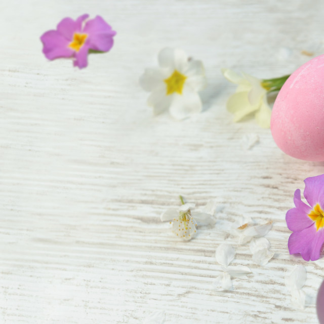"""""""easter eggs painted in pink and purple on a table among spring f"""" stock image"""